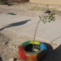Contribution à la préservation de l'environnement par la réutilisation de pneus repeints