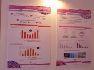 Présentation de l'étude réalisée par M&D sur le safran dans la zone Taliouine/Taznakhte