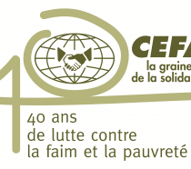 Logo-fr-CEFA-corretto-300x186